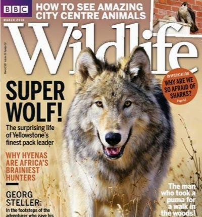 BBC WildLife March 2018