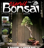 Esprit Bonsai International – June 2018