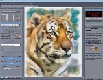 MediaChance Dynamic Auto Painter Pro 6.03 x64