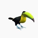 Bird Toucan V3