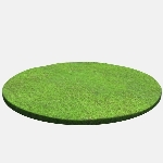 Circular Grass Patch V1