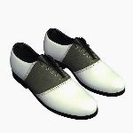 Shoe V1