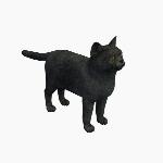 Cat V1