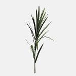 Sugarcane Field V1