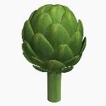 Vegetable V1