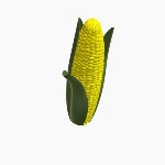 Ear Of Corn Yellow V2