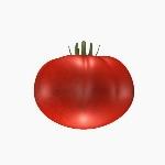 TomatoBeefSteak V1