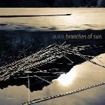 Branches of Sun ، آلبوم نئوکلاسیکال امبینت زیبایی از اوکایBranches of Sun  (2018)