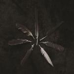 آلبوم موسیقی Dust and Disquiet آلترناتیو پست راک زیبایی از گروه CaspianDust and Disquiet  (2015)