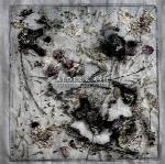 مزامیر برای ساندر ، آلبوم کلاسیکال امبینت زیبا و تامل برانگیزی از آلدر و اشPsalms for the Sunder  (2017)
